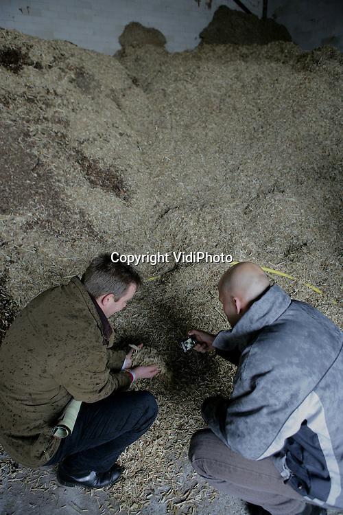Foto: VidiPhoto..ACHTERBERG - Bij kalvermester Henken in Achterberg werd woensdag een demonstratie rond de verbranding van olifantsgras (een soort bamboe) voor de eigen energievoorziening. De oogst van het gras kon vanwege het natte weer niet doorgaan. : Foto: Bezoekers bekijken de grassnippers.