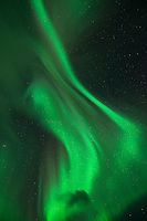 Northern Lights - Aurora Borealis shine in Sky,  Lofoten Islands, Norway