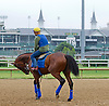 American Pharoah (Pioneerof the Nile-Littleprincessemma)