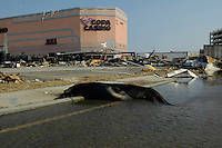 A dead sealion outside the Copa Casino in Gulfport after Hurricane Katrina.
