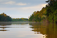 Kinabatangan River, Sabah