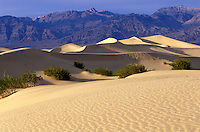 Stovepipe Wells Sand Dunes.  Death Valley National Park