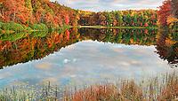 Autumn Kaleidoscope IV
