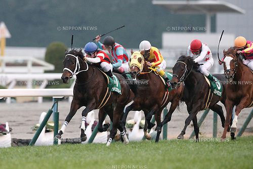 (L-R) Win Primera (Yuga Kawada), Siberian Superb (Kota Fujioka), Ninja (Shigefumi Kumazawa), Mikki Love Song (Futoshi Komaki), T M Taiho (Suguru Hamanaka),<br /> JANUARY 5, 2016 - Horse Racing :<br /> Win Primera ridden by Yuga Kawada wins the Sports Nippon Sho Kyoto Kimpai at Kyoto Racecourse in Kyoto, Japan. (Photo by Eiichi Yamane/AFLO)