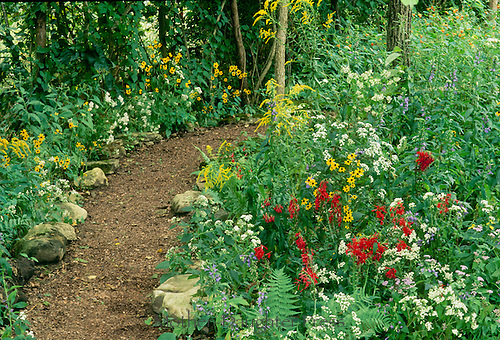 Bark Muclh path lined by rock leads from sunny blooms into shaded garden and surprises ahead