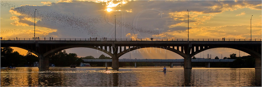 Every summer, a colony of approximately 1.5 million Mexican Free-Tail bats descend on Austin. They sleep during the day under the Congress Bridge spanning Lady Bird Lake. At dusk, they take to the skies to feed.