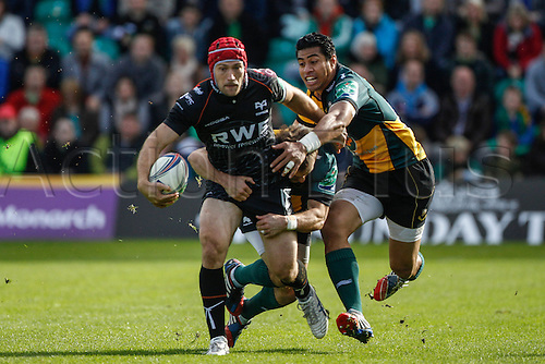 20.10.2013 Northampton, England.  Richard FUSSELL of Ospreys is tackled by George PISI and Stephen MYLER of Northampton Saints during the Heineken Cup match between Northampton Saints and Ospreys at Franklin's Gardens.  Final score: Northampton Saints 27-16 Ospreys.
