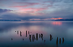 Idaho, North, Bonner County, Sandpoint. Rustic pilings on a calm morning under  colorful pre- sunrise light on Lake Pend Oreille.