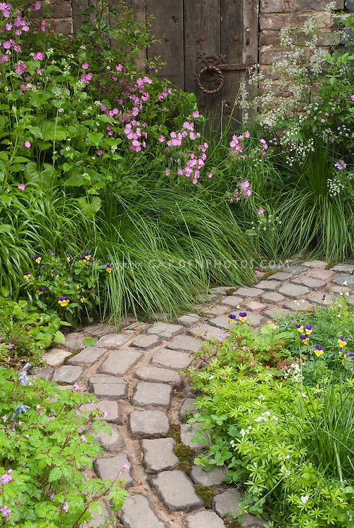 Stone pathway plant flower stock photography - Rustic flower gardens ...
