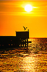 Captree Pier Sunrise Silhouettes in April, Captree Long Island