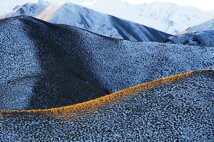 Last light on tussock ridgeline in Lindis Pass,New Zealand - stock photo, canvas, fine art print