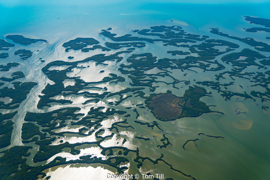 Ten Thousand Islands, Ten Thousand Islands National Wildlife Refuge, Florida Southwest Florida Gulf of Mexico