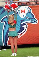 Miami Dolphins vs. New England Patriots, November 1999