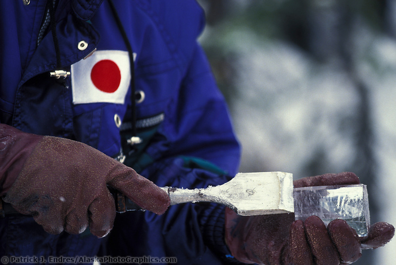 Ice sculptor chisels away at sculpture during the World Ice Art Championships held each march in Fairbanks, Alaska,