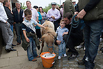 Gypsy annual Horse Fair. Wickham Hampshire UK. Goddard family opening the fair in the traditional manner. Pony drinks from a bucket of beer.Smaller of the tow boys is Spock Goddard