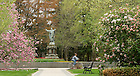 May 5, 2011; Main Quad..Photo by Matt Cashore/University of Notre Dame