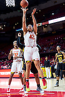 College Park, MD - DEC 6, 2016: Maryland Terrapins center Brionna Jones (42) goes up strong to the basket during game between Towson and Maryland at XFINITY Center in College Park, MD. The Terps defeated the Tigers 97-63. (Photo by Phil Peters/Media Images International)