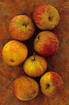 Apples on rusty sheet