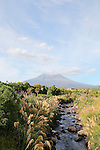 Punehu Stream and Mt Taranaki, New Zealand