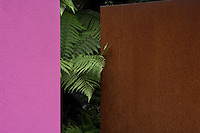 Detail of a pink rendered wall together with a wall of mild rusted steel with fronds of a tree fern