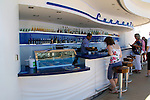 Disney Fantasy Cruise Bar