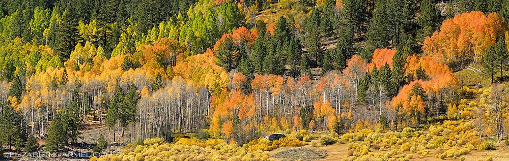 Hope Valley Panorama
