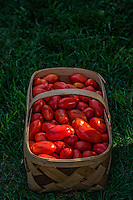 Fresh tomatoes in a wooden basket  for sale  at a local farmers market.