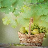 Isabella, MODERN, MODERNO, photo+++++,ITKE046620-K,#n# winde,grapes