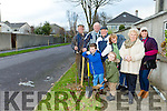 Meadowlands Estate residents have Planted trees for to celebrate  the end of the centenary year of 2016. Pictured front l-r Paschal Buckley, Ryan Buckley, Una Buckley, Back L-r Vincent O'Carroll, Pa Tangney, Denis Lyons, Mary O'Shea,  Elisha Buckley,