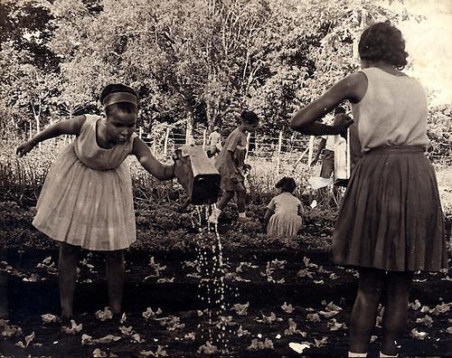 Alumnas en el huerto de una Escuela Pública, 1971 © Apeco
