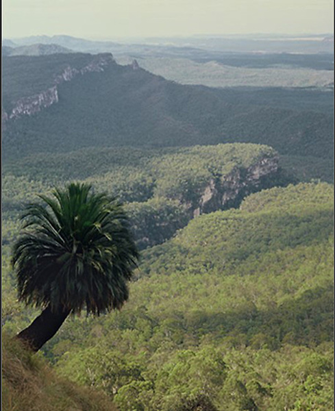 View from The Ranch<br /> Carnarvon Gorge NP<br /> Qld