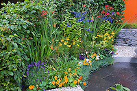 Heirloom and old-fashioned plants flowers: Tropaeolum nasturtiums, Crocosmia, Lavandula angustifolia lavender herb, Coreopsis, Fagus hedge, Alchemilla flowers, blue Salvia, Kniphofia, patio, stone wall, mixture of annuals, perenialls, ornamental grass, herbs, shrubs, summer flowering bulbs, wide variety of plants types