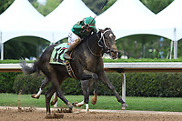 HOT SPRINGS, AR - April 14: Ever So Clever #12, with jockey Luis Contreras aboard, wins the Fantasy Stakes at Oaklawn Park on April 14, 2017 in Hot Springs, AR. (Photo by Ciara Bowen/Eclipse Sportswire/Getty Images)
