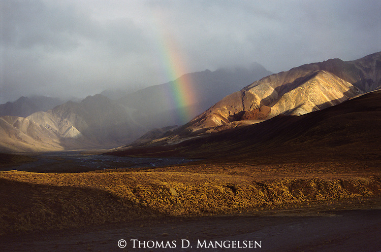 Variegated rays of filtered sunlight and autumn storm clouds conspire to create a scene of pure peace and beauty along the spine of the Alaska Range in Denali National Park, Alaska.