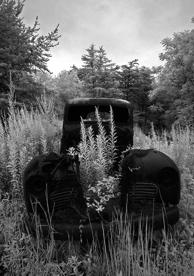 Weeds grow from the engine of an old truck abandoned in Nelson County, VA.