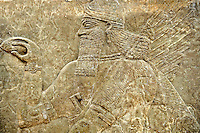 Chaldean Assyrian relief sculpture slab from the northwest palace of King Ashurnasirpal II of a Genie standing in front of the tree of life. 881-859 B.C form Nimrud or Nimrut ( Kalhu or Kalah). Istanbul Archaeological exhibit Inv. No. 4.