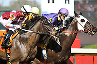 HOT SPRINGS, AR - March 18: Streamline #7 (outside, left) and jockey Chris Landeros vie for position at the start of the Azeri Stakes at Oaklawn Park on March 18, 2017 in Hot Springs, AR. (Photo by Ciara Bowen/Eclipse Sportswire/Getty Images)