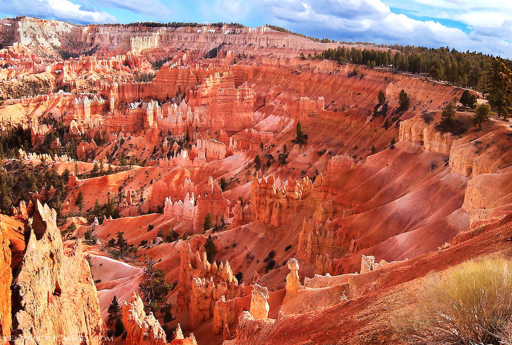Bryce Canyon Evening