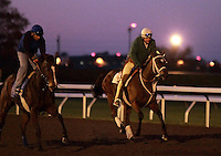 15 October.  Havre de Grace and trainer Larry Jones out for morning exercise under the lights at Keeneland racecourse.