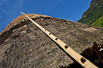 Traditional bamboo ladder ascends a thatch roof, Wae Rebo, Flores.