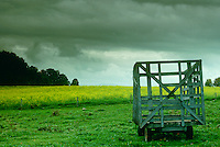 Oncoming storm creates a dramatic backdrop for an old farm wagon and a field of wild mustard, New England