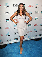 Heather McDonald.Bravo's Andy Cohen's Book Release Party For &quot;Most Talkative: Stories From The Front Lines Of Pop Held at SUR Lounge, West Hollywood, California, USA..May 14th, 2012.full length grey gray dress hands on hips.CAP/ADM/KB.&copy;Kevan Brooks/AdMedia/Capital Pictures.