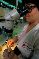 Stock photo of research using a binocular scope