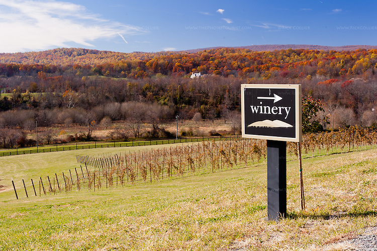 A driveway-side sign points the way past the view, to the parking area behind Delaplane Cellars' tasting room.