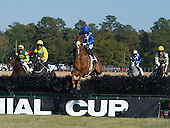11/15/2014 - Colonial Cup Races