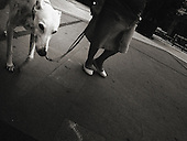 Europe, Italy, Milan, Milano, Street Photography