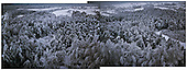 Niegowa 01.2010 Poland<br /> View from the silo to the frozen and icy woods.<br /> Three atmospheric forces: rain, snow and frost have changed into an ecological disaster the Myszkowski district in the Czestochowskie province,<br /> located 230 kilometers south of Warsaw. Almost 95% of all trees are down.Thousands of homes are left without electricity.<br /> Photo: Adam Lach / Napo Images for Newsweek Polska.<br /> <br /> Widok z silosu na zamarzniete i zlodowaciale lasy.<br /> Wstepnie &quot;tylko&quot; 95% scietych drzew w dwoch powiatach. 0.5 miliona metrow szesciennych zniszczonych lasow..Tysiace gospodarstw bez pradu. Wszyscy maja swiadomosc, ze na kumulacje trzech niekorzystnych .zjawisk atmosferycznych rady nie ma.Trzy zjawiska kt&oacute;re zamienily jeden z obszarow Polski w istna katastrofe ekologiczna: deszcz, snieg i szadz.<br /> Fot: Adam Lach / Napo Images dla Newsweek Polska