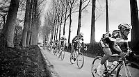 Team OmegaPharma-QuickStep &amp; Belkin Pro Cycling dominating the race while descending into Nokere<br /> <br /> Kuurne-Brussel-Kuurne 2014