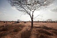 Fresh graves in Dagahaley, part of the sprawling Dadaab refugee camp. Tens of thousands of Somali refugees have fled  to Kenya. Many arrive in the refugee camp exhausted and malnourished after a perilous journey out of draught and war torn Somalia. Hundreds have died  in the camp as a consequences of malnutrition.