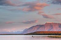 Brown bear sits along the shore of Naknek lake, Mount Katolinat of the Kejulik mountains in the distance, Katmai National Park, southwest, Alaska.